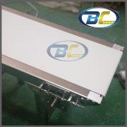 edge belt conveyor